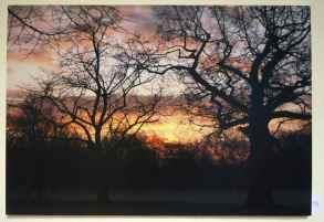 Colin Ember- Walpole Pk - £25.00